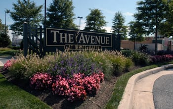 The Avenue WM