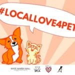 Maryland SPCA to hold 'Local Love' adoption event at White Marsh Mall