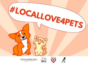 SPCA Local Love Event