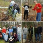 Volunteers plant 100 trees in eastern Perry Hall