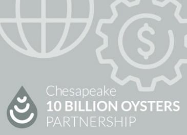 Chesapeake 10 Billion Oysters