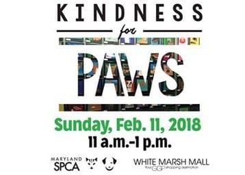 MD SPCA Kindness for Paws 2018