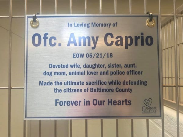 Amy Caprio Plaque 2