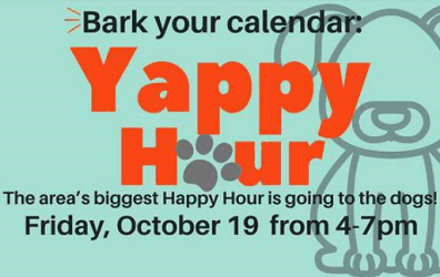Yappy Hour The Avenue